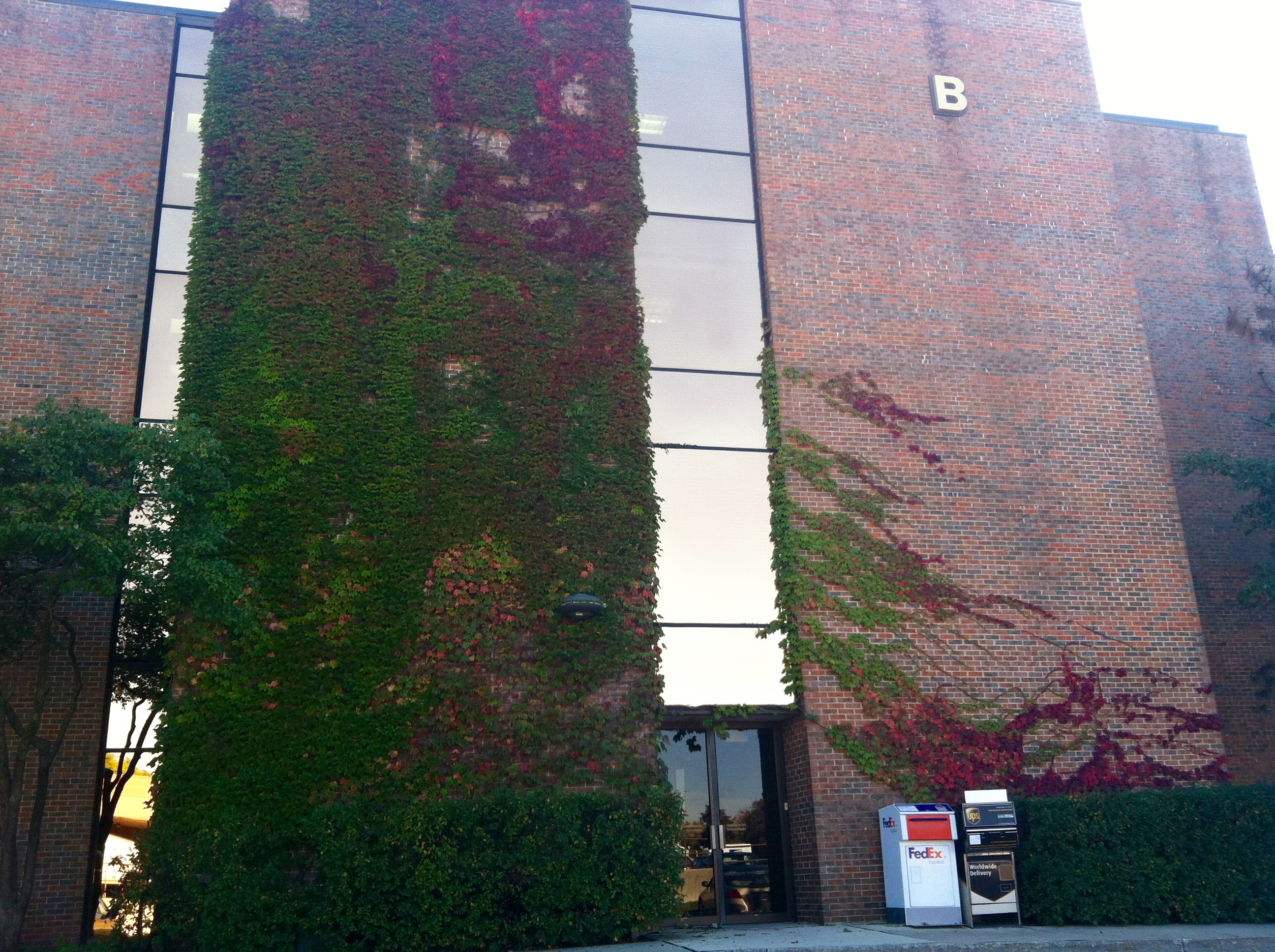 North entrance to our office in Building B 60137